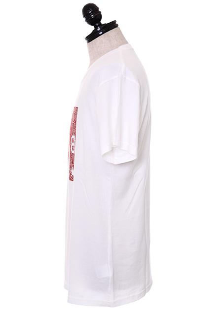 CREW NECK T-SHIRTS (MxBGHB)
